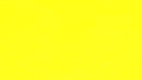 podglad koloru folii Arlon 825 Hi-Liter Yellow - zolty Mat